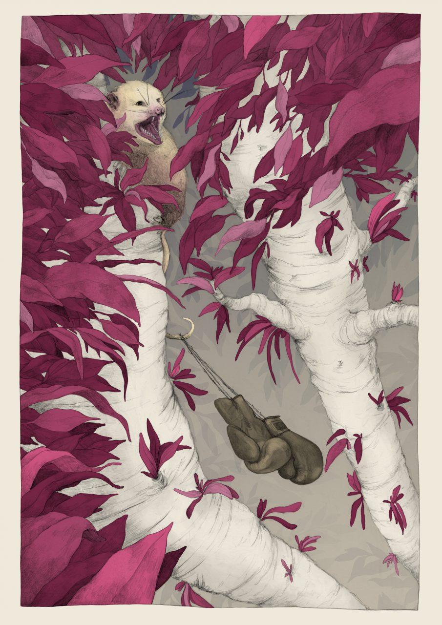18-01-07 Opossum