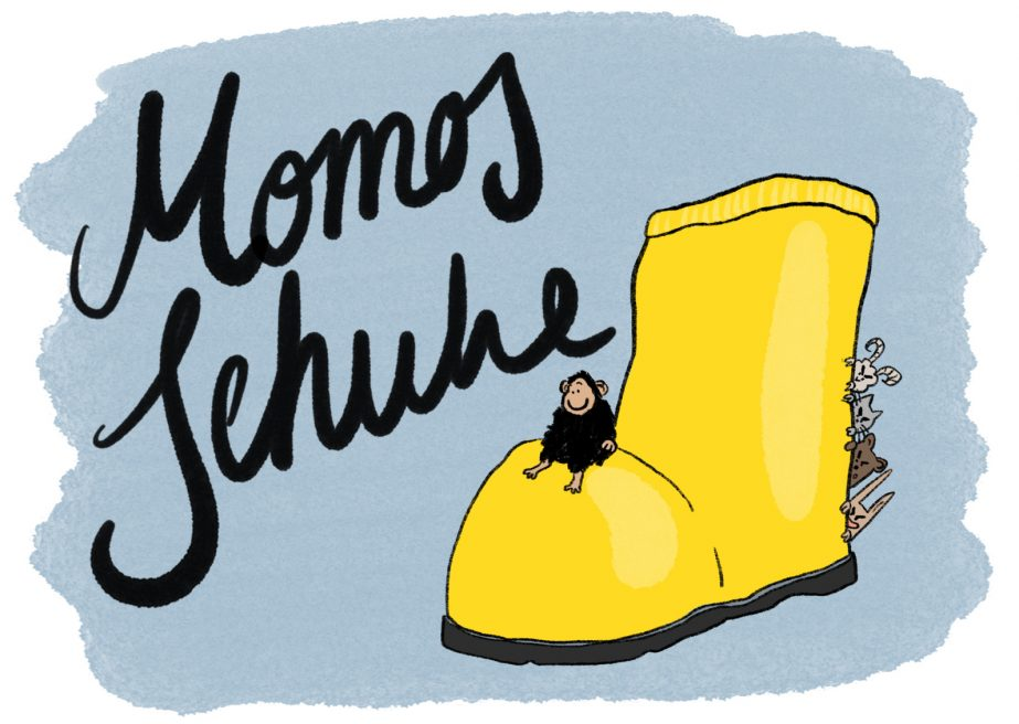 Momos Schuhe